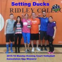 NRS Court Volleyball B Div Winners
